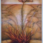 Natividad Gutierrez NATI1-150x150