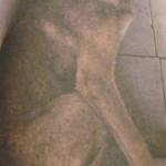 Disgrace (Schande) dans Theater romnov2012-002-150x150