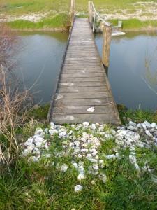 Vendée2013-März 653