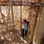 bigbamboo2-005-150x150