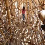 bigbamboo2-025-150x150