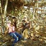 bigbamboo3